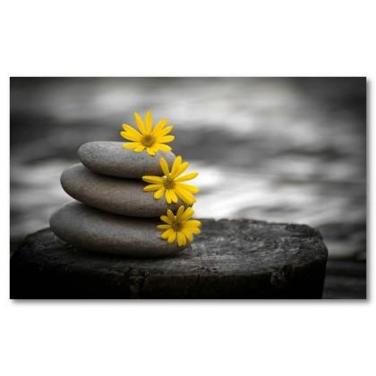 Αφίσα (βράχια, πέτρες, βότσαλα, γκρι, λουλούδι, κίτρινος, μαύρο και άσπρο)